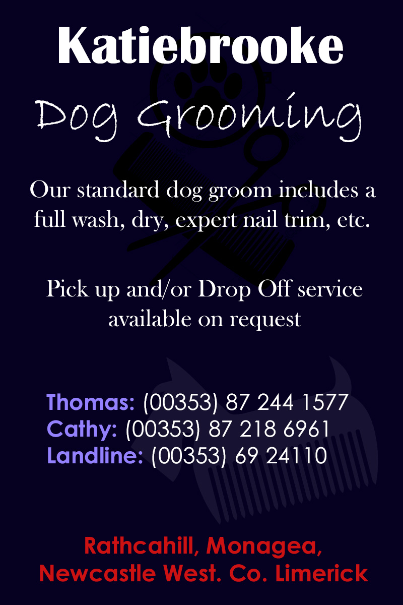 dog-grooming-newcastle-west